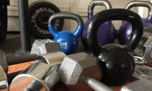 March 2017 Training Log